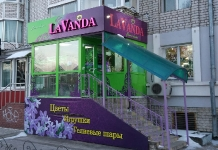 Лаванда 2